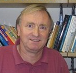 Professor David J Sanderson